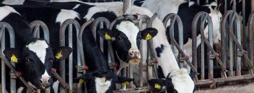 Środki chemiczne stosowane w rolnictwie